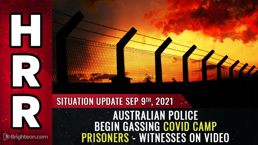 """Disturbing video: Australian covid camp police threaten to """"gas"""" covid prisoner instead of releasing him after 14days"""